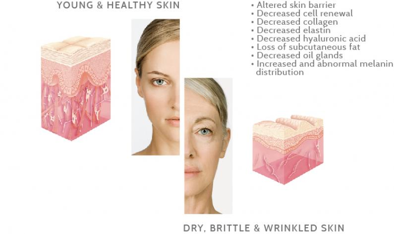 young and healthy skin